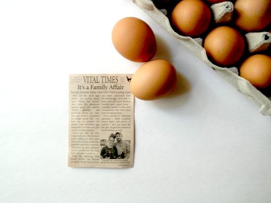 free-range-eggs-2-1
